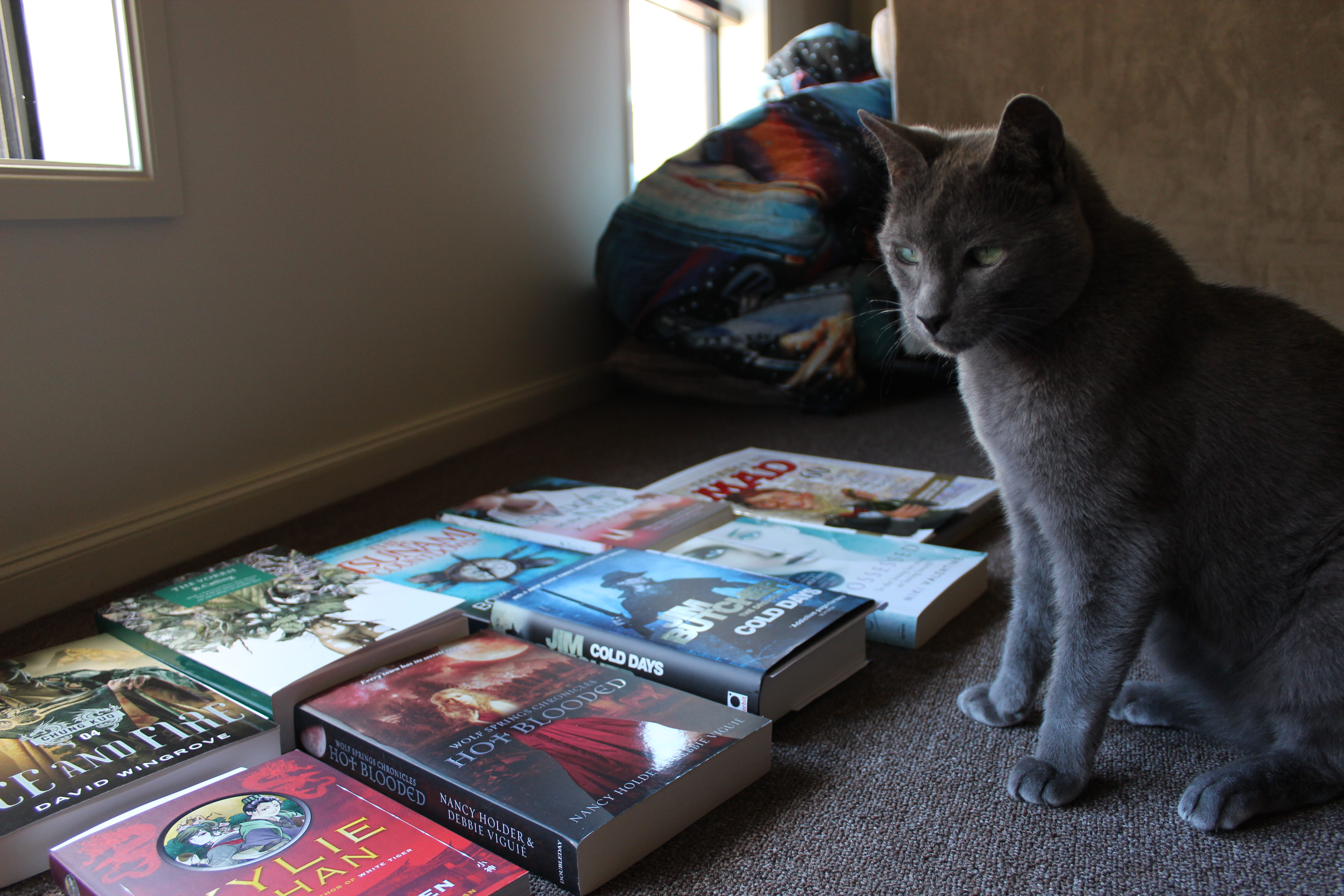 Smokey hoards books