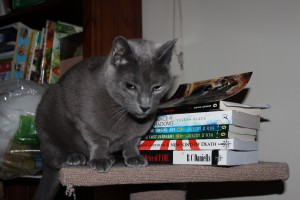 Smokey with books