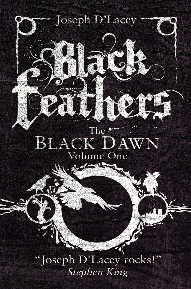 Black Feathers book trailer