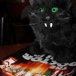 BatCat discovers the Big Issue Doctor Who anniversary edition