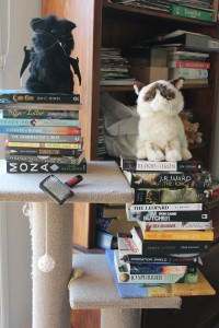 Paper books, plastic discs and kitteh