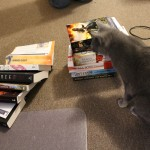 Upstaging the books but not looking at the camera, MODEL KITTEH