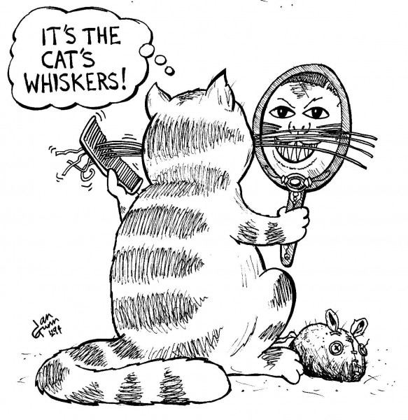 Cat's whiskers — a silly illo by Ian Gunn