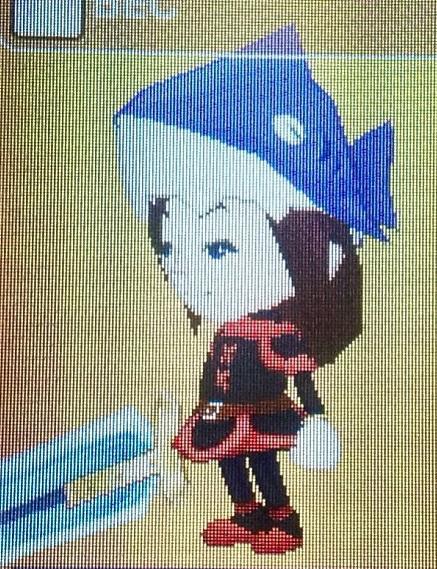 FL Shark hat