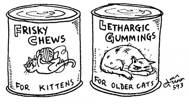 Frisky chews