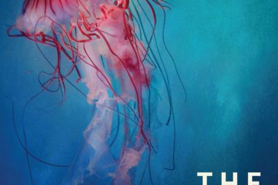 the Trespassers : a jellyfish