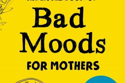 Little Book of Bad Moods for Mothers by Lotta Sonninen