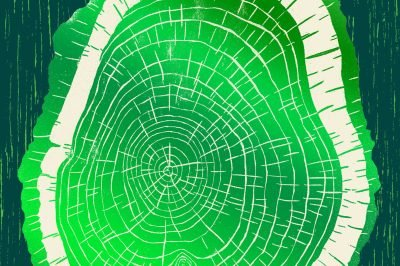 Greenwood: a green cover features a cross-section of a tree trunk
