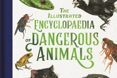 The Illustrated Encyclopedia of Dangerous Animals: several illustrated pictures of animals surround the title