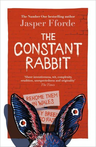 constant rabbit