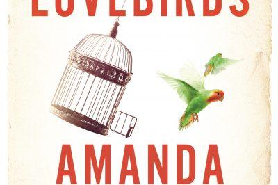Lovebirds: a birdcage is askew with its door open as a bird flies away